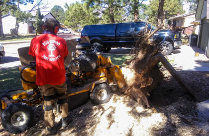 Stump Removal Colorado Springs